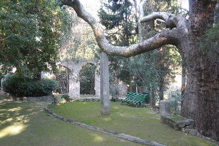 Rodini park - Rhodes Greece
