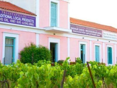 Estate Anastasia Triantafyllou | Rhodes Wine Region | Wines from Rhodes | Wine of Rhodes island | Vineyards of Rhodes | Rhodes Wine Tour | Wine Roads of Rhodes | Wine Tourism in Rhodes | Rhodes Varieties