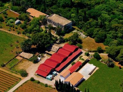 Mercouri Estate | Peloponnese wines | The Vineyards of Peloponnese | Peloponnese Wine Region | Peloponnese Wine Roads | Wines and Grape Varieties of Peloponnese | Peloponnese wineries | Wines from the Peloponnese
