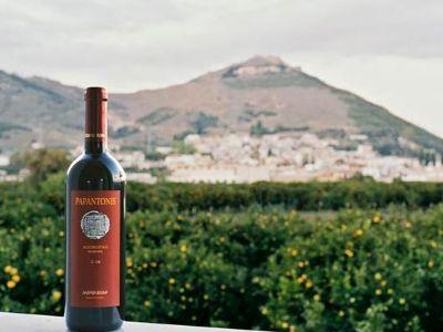 Papantonis Winery | Peloponnese wines | The Vineyards of Peloponnese | Peloponnese Wine Region | Peloponnese Wine Roads | Wines and Grape Varieties of Peloponnese | Peloponnese wineries | Wines from the Peloponnese